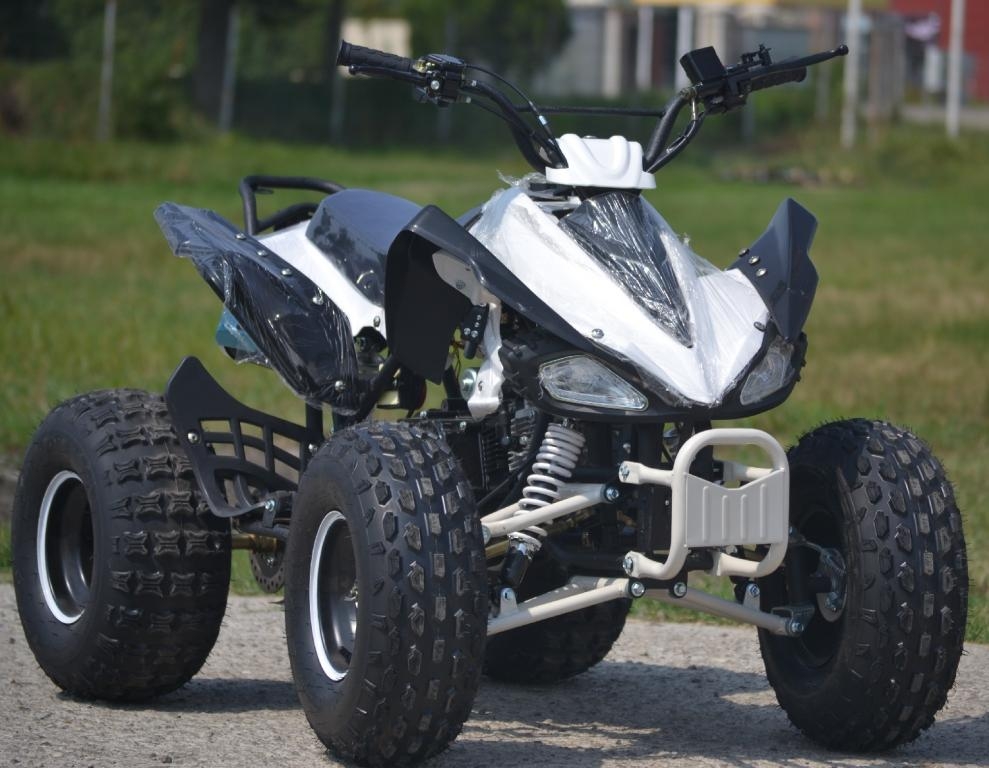 Atv raptor 125cc import germania for Atv yamaha raptor 125cc
